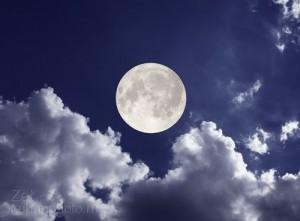 luna-300x221