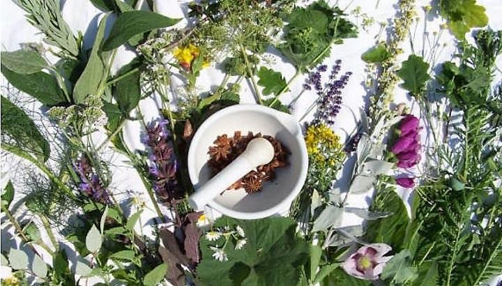 травы и ступка для лечения панкреатита
