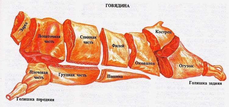 Мясо - говядина (туша)