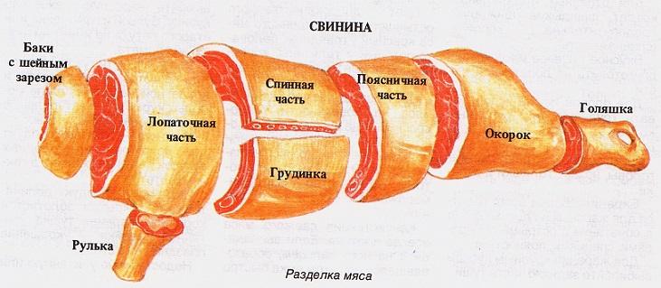 Мясо - свинина