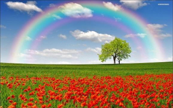 Приметы на радугу