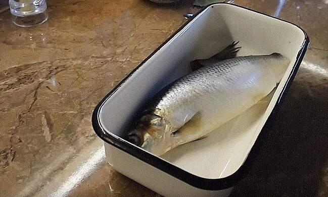 рыба в лотке