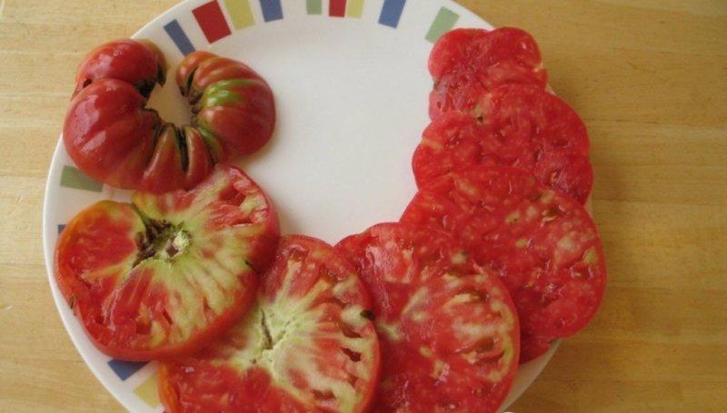 болезнь плодов томата