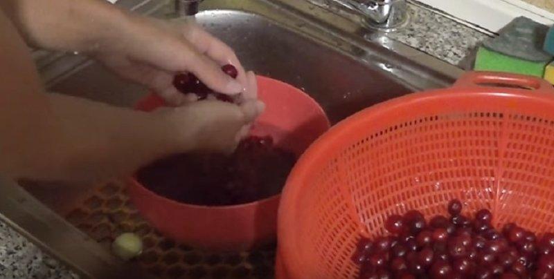 моем ягоды вишни