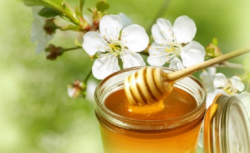 компот с медом