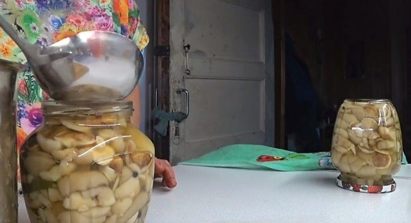 раскладываем грибы по банкам