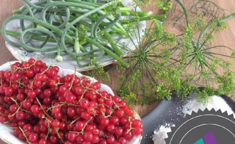 чесночные стрелки и ягоды смородины