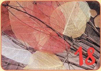 листья с ветками