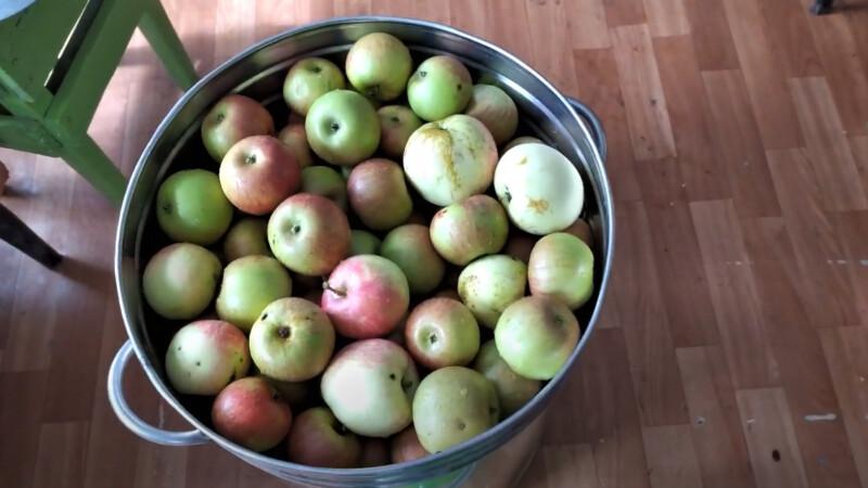 яблоки в баке