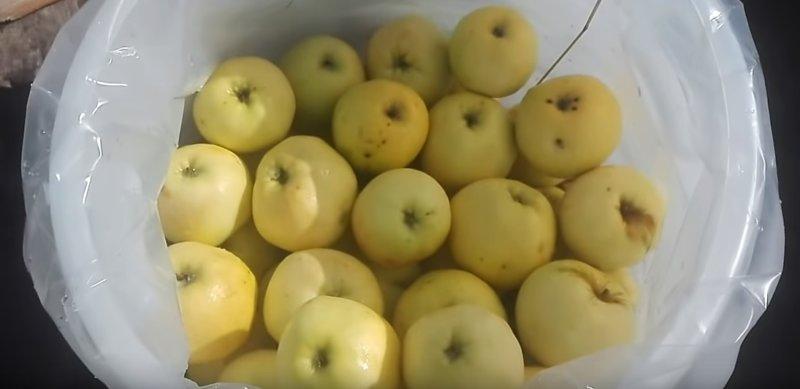 яблоки уложены до верха бочки
