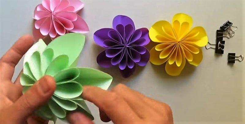 четыре цветка разного цвета