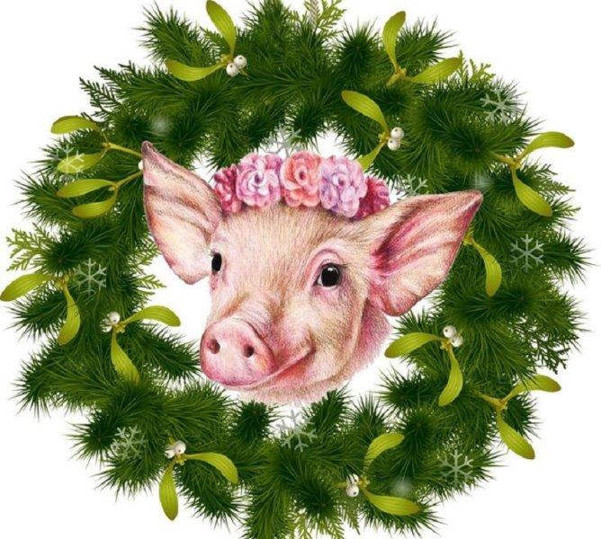 год свиньи для женщин