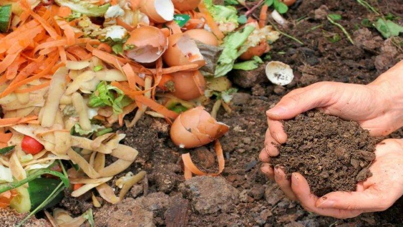Органические удобрения для огорода: Виды, свойства, характеристика
