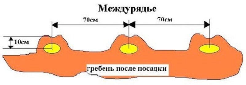 схема гребня