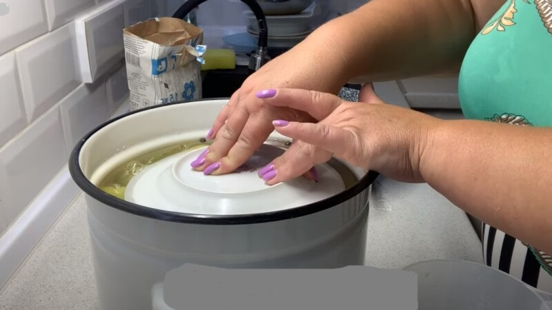 тарелка на перцах в кастрюле