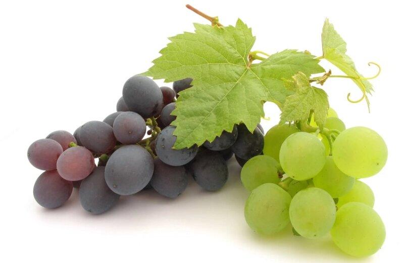кисти винограда