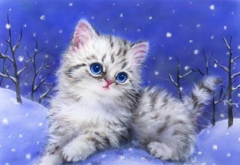 котенок на снегу - новогодние картинки
