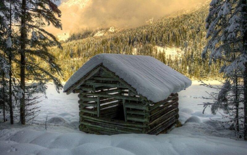 новогодний домик в лесу