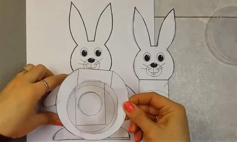 шаблон живота кролика