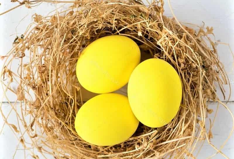 желтые яйца