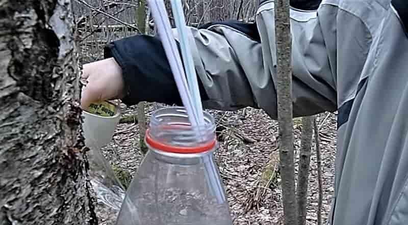 трубки в бутылке